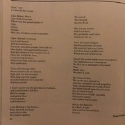 My Prize Wining Poem The Crystal Bed 1993