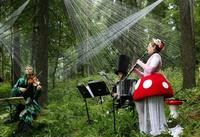 Our Festival, by Maarit Kytoharju